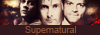 supernatural - no rest for the wicked Logo311