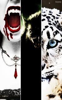 (c) Nono Vampir13