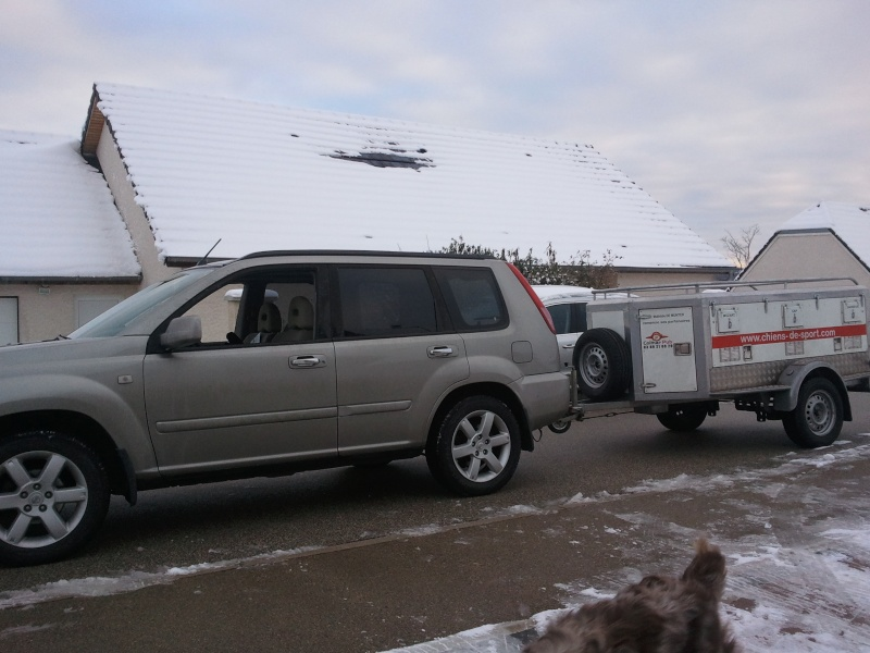 quel vehicule pour transporter vos chiens? - Page 3 2010-110