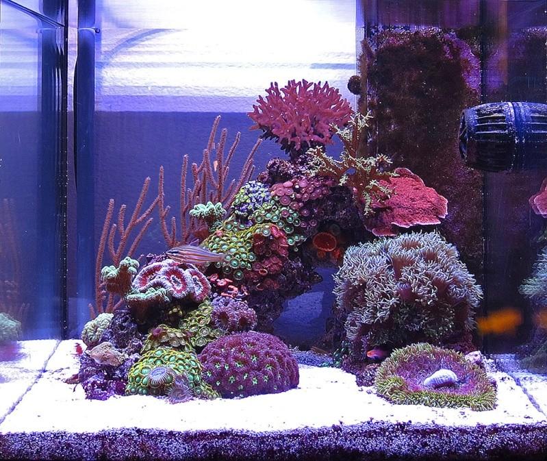 Bac 70L aquatlantis Fullta10
