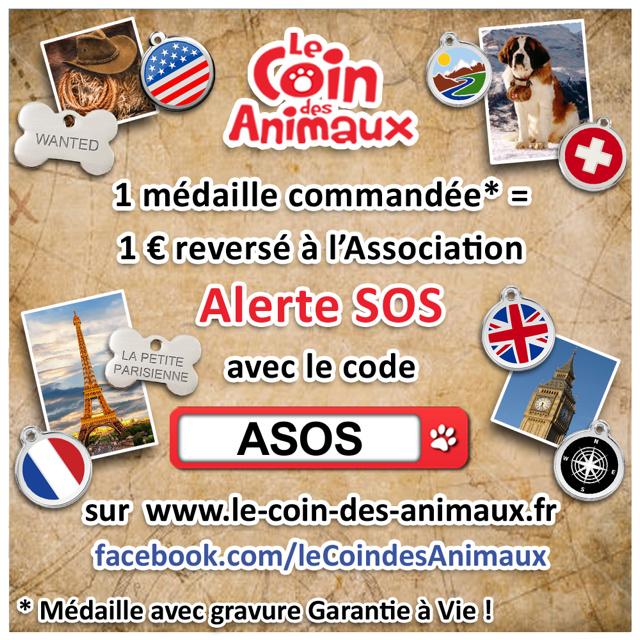 LE COIN DES ANIMAUX Asos10