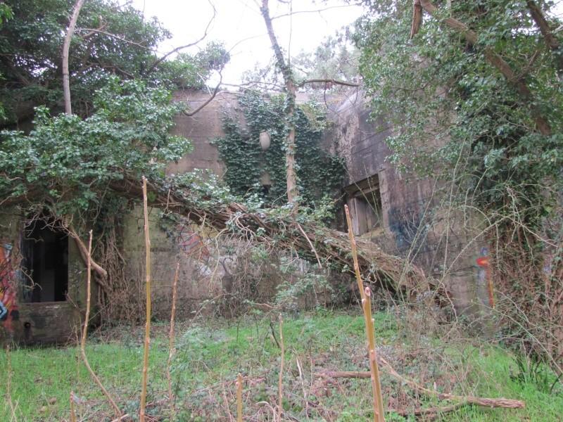 bunkers en charentes Stp_gi12