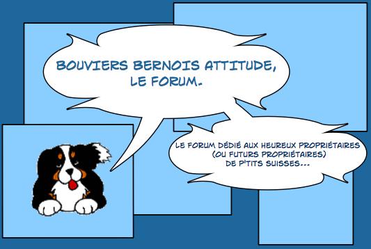 Forum bbattitude