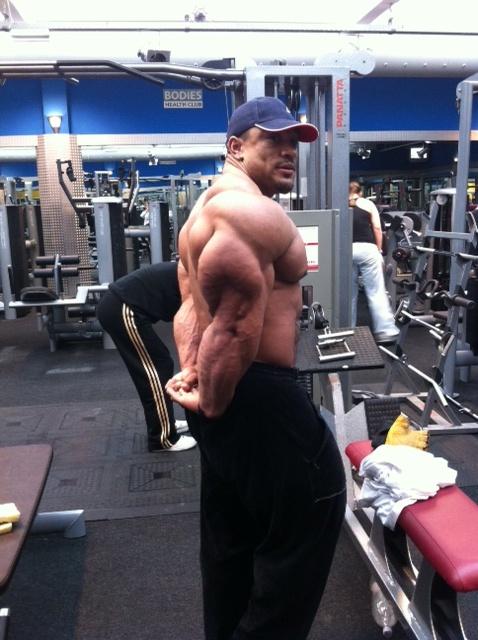 Les triceps de Roelly Winklaar... 18038311