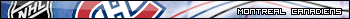 créer un forum : Ligue De Hockey Simulé Montréal 17273x10