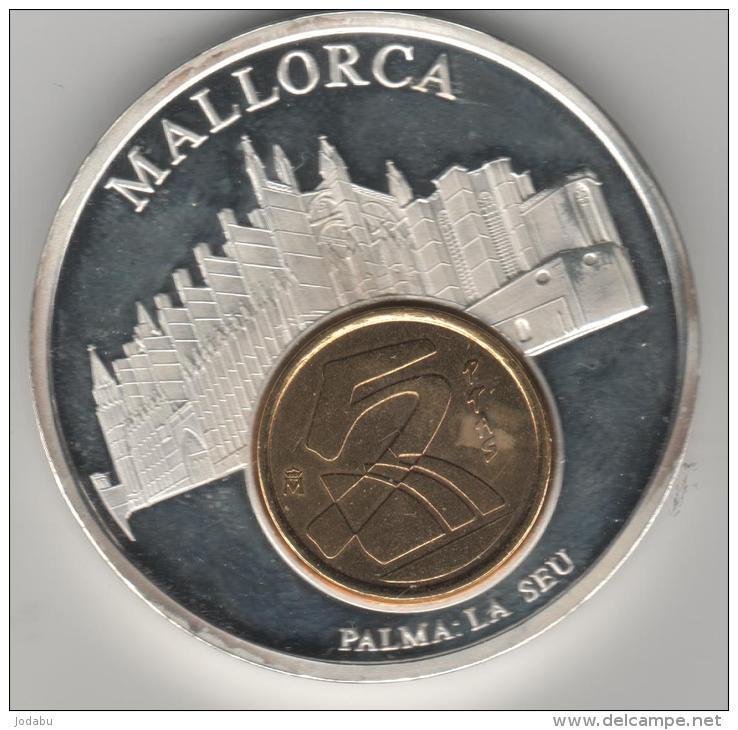 Palma Palma10