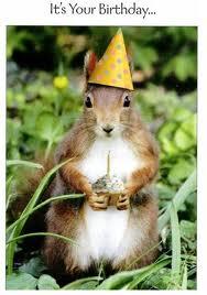 Présentation de LadySquirrel - Page 4 Images10