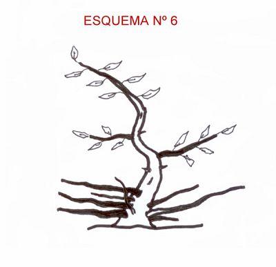 Técnicas de Engorde por Huang Ho Esquem49