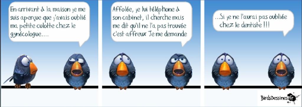 Les Birds - Page 2 Dentis10
