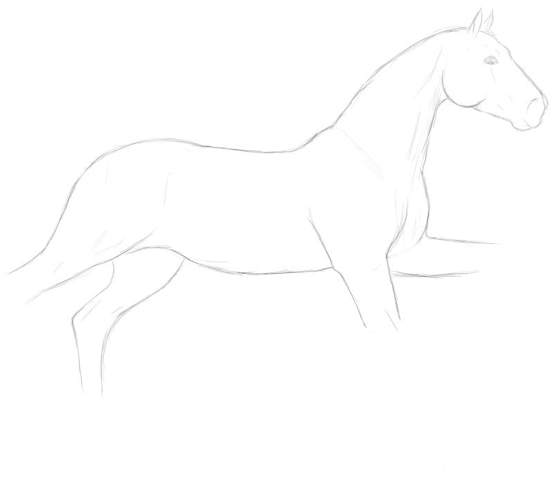 Cheval au galop (dessin puis colo) Cheval10