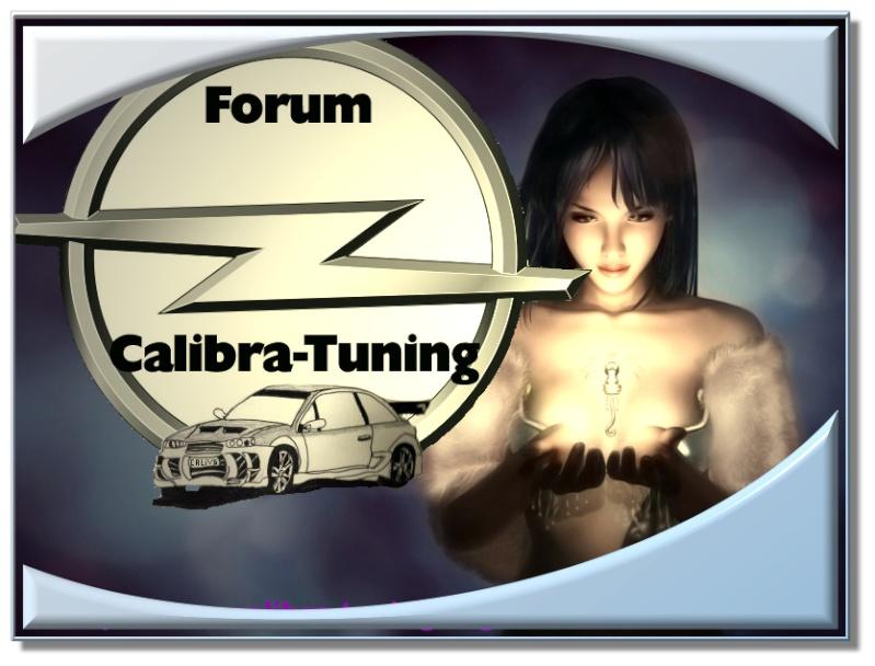 fond d'ecran pour les proprio du Forum 1.0 1_logo10