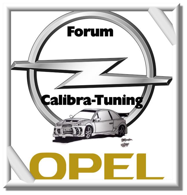 fond d'ecran pour les proprio du Forum 1.0 1_sigl10
