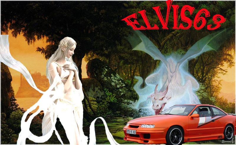 fond d'ecran pour les proprio du Forum 1.0 Elvis610
