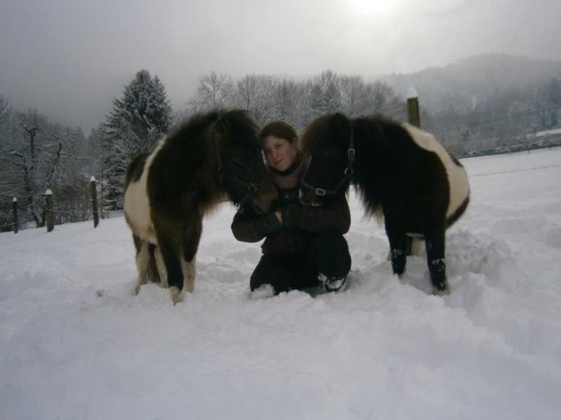 GUIZMO - Shetland  né en 2011 - Adopté en décembre 2011 par jennyetdiego - Page 2 Guizmo10