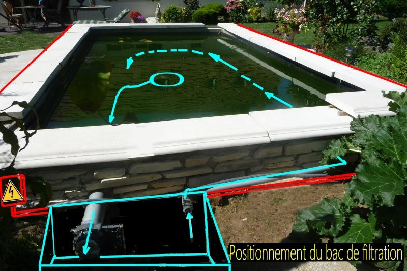 UN PETIT BASSIN A LA FRANCAISE - Page 6 3p118010