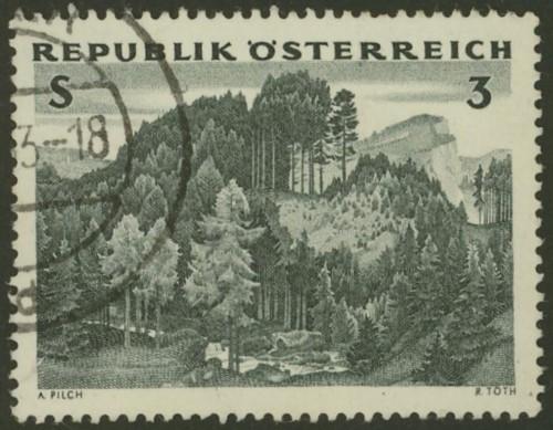 Holzwirtschaft / Holzverarbeitung Asterr11