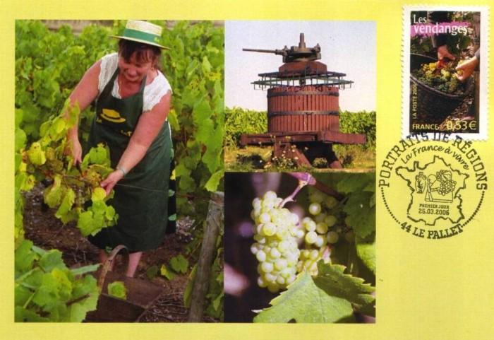 Weine und Weinbau in aller Welt France11