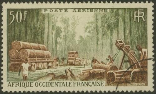 Holzwirtschaft / Holzverarbeitung Franz_10