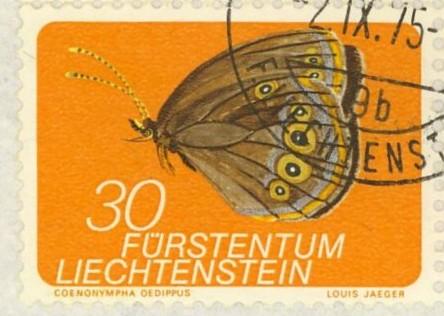 Schmetterlinge Schm_l11
