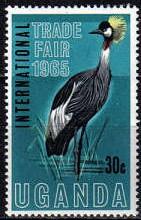 Vögel Uganda10