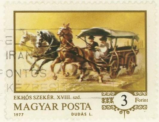 Pferde Ungarn10