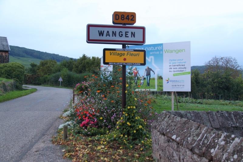 Attribution d'une première fleur à Wangen en 2013 Img_4410