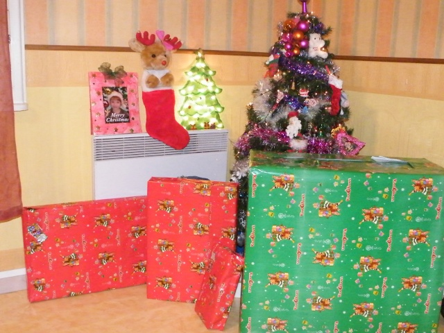 joyeux noel a tous et bonne année 2009!!!!!! Dscf2810