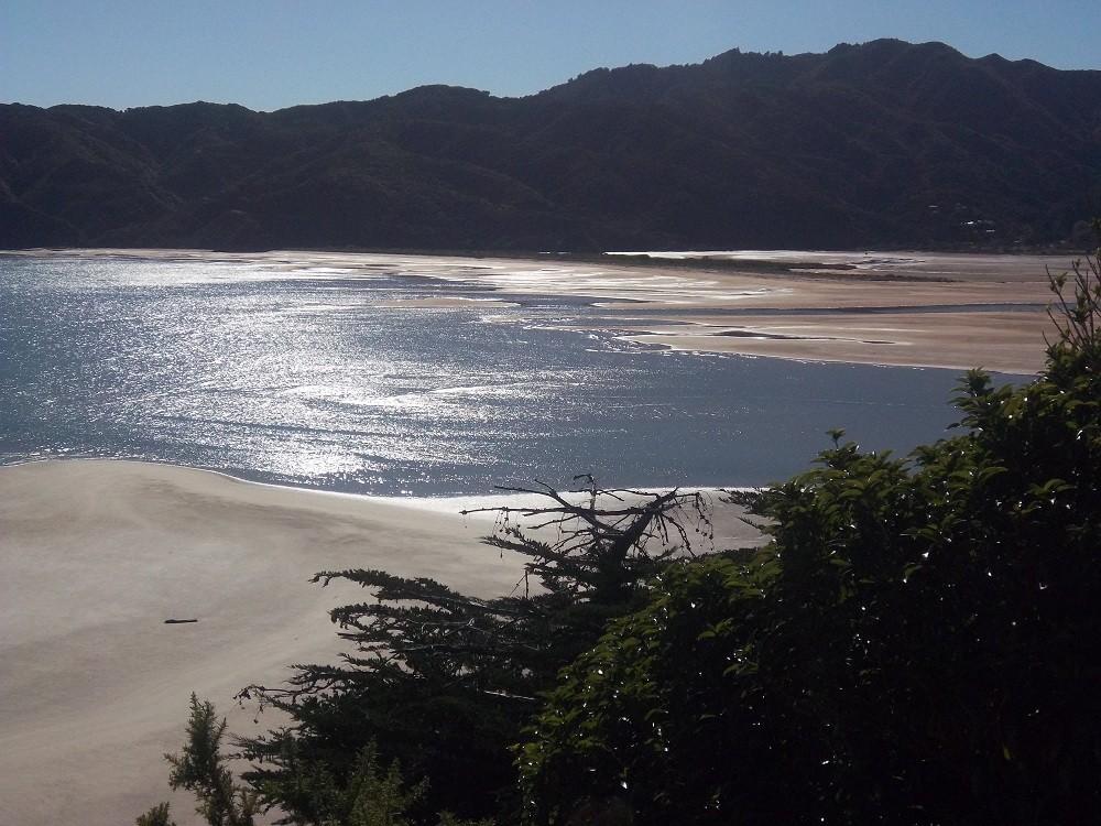 Souvenirs de Nouvelle-Zelande ( photos ) Abelta11