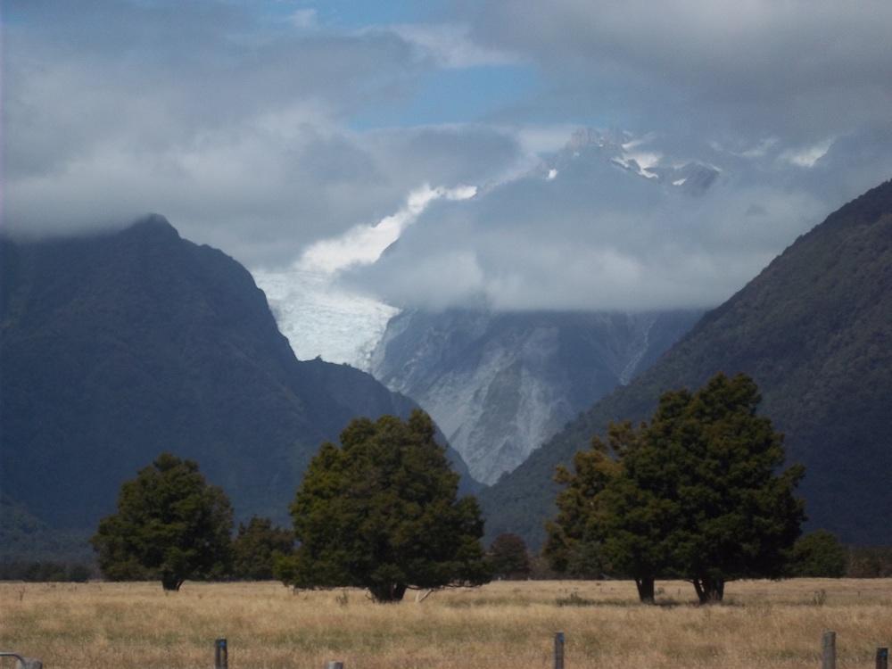 Souvenirs de Nouvelle-Zelande ( photos ) Foxgla10