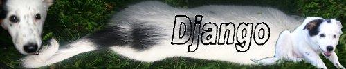 BLANC - Blanc envahissant , confirmation et surdité Django10