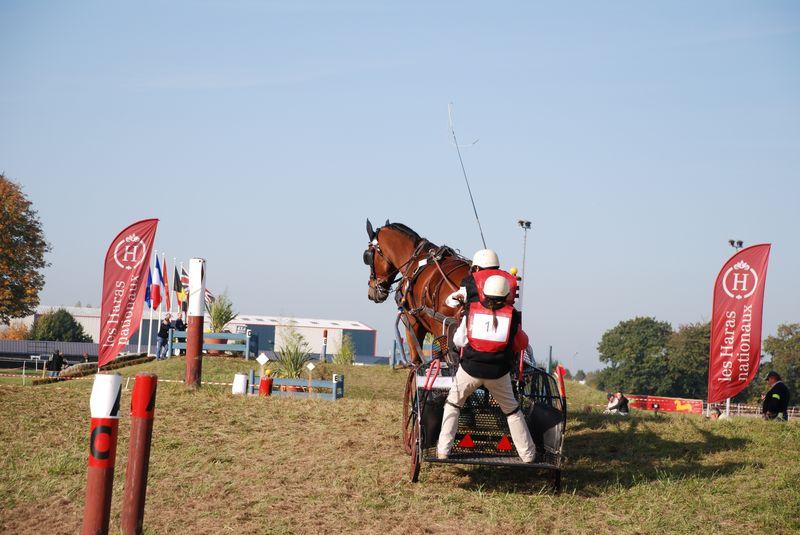 Championnat de France et journées internationales de l'attelage: Lisieux 2008 11oct286