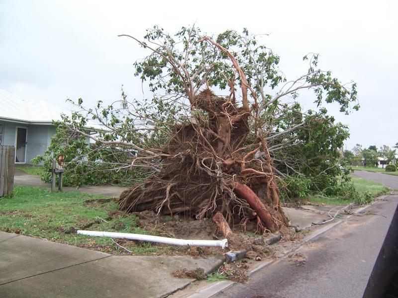 Cyclone Yasi 110_5311