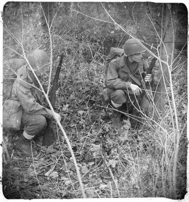 """La division au """"Cactus"""" ! (103rd Infantry Division) 30289110"""
