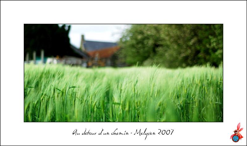 photos pour expo PLM 2009 - Page 2 Cultur12