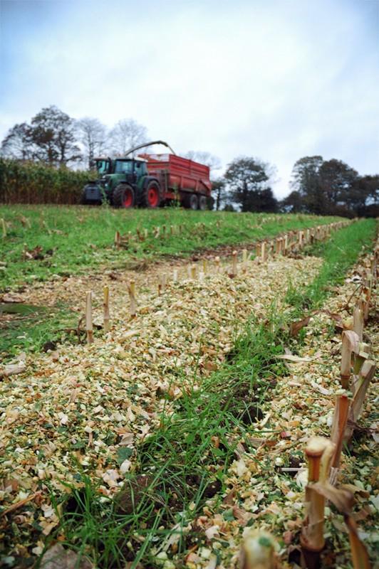 Ensilage de maïs 2008 - Page 9 Dsc_0611