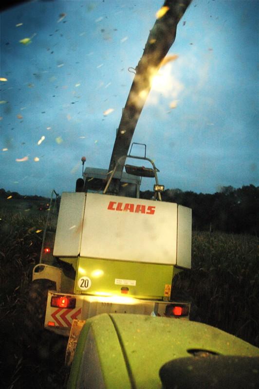 Ensilage de maïs 2008 - Page 9 Dsc_0612