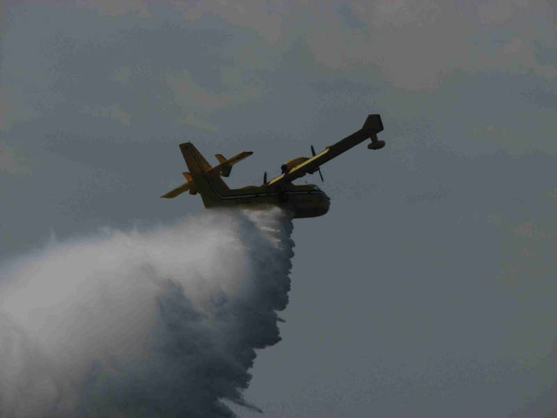 Avioane cisternă (pompieri) Img_1711