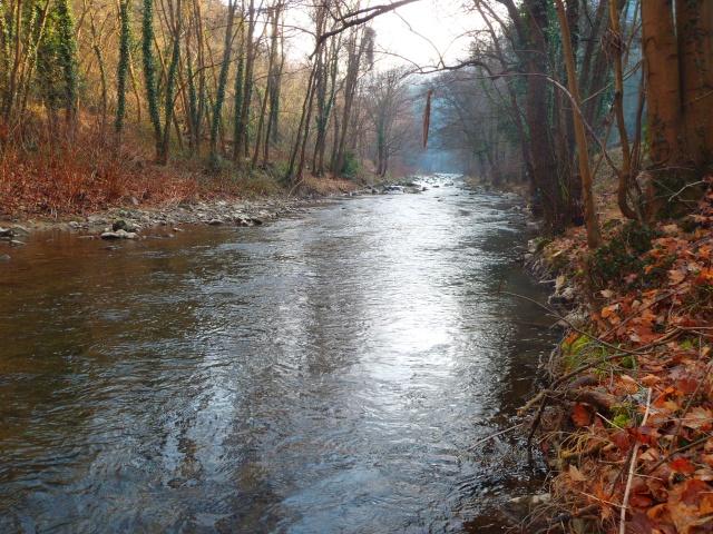 quels que photo de ma rivière pour l'ouverture de la truite Photo112