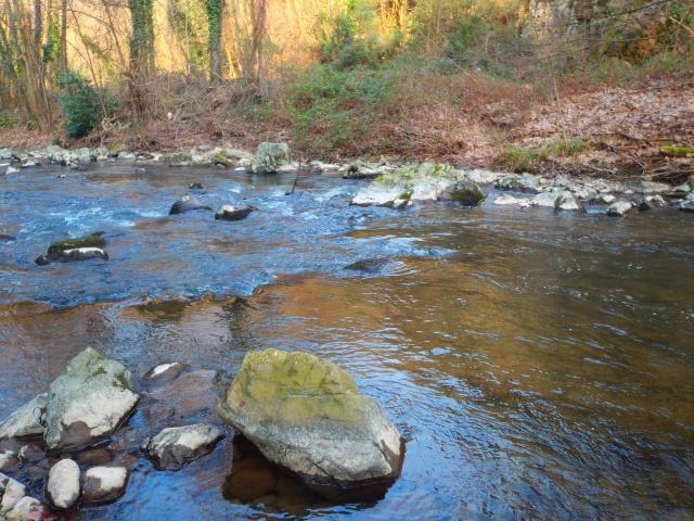 quels que photo de ma rivière pour l'ouverture de la truite Photo113