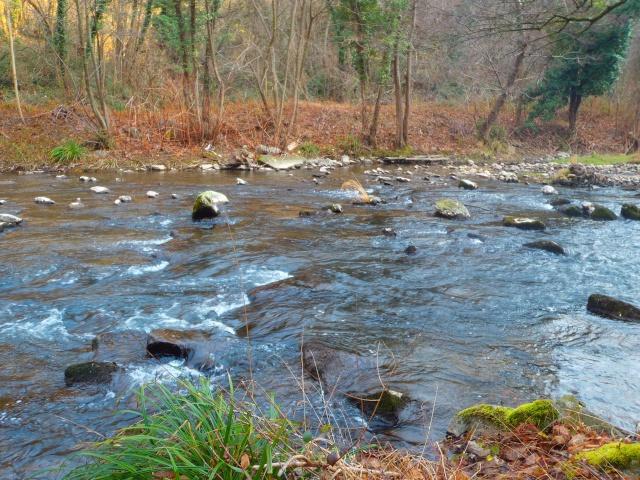 quels que photo de ma rivière pour l'ouverture de la truite Photo114