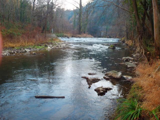 quels que photo de ma rivière pour l'ouverture de la truite Photo115