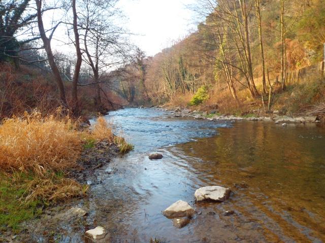 quels que photo de ma rivière pour l'ouverture de la truite Photo210