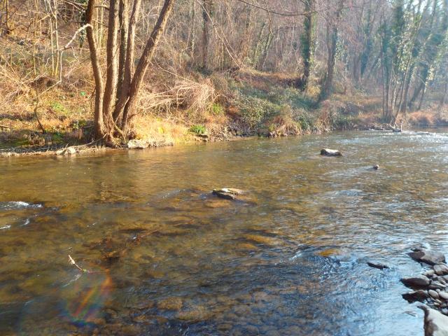 quels que photo de ma rivière pour l'ouverture de la truite Photo410