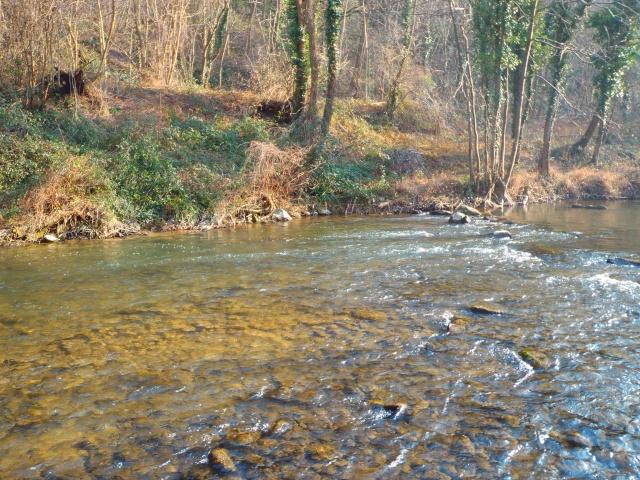 quels que photo de ma rivière pour l'ouverture de la truite Photo510