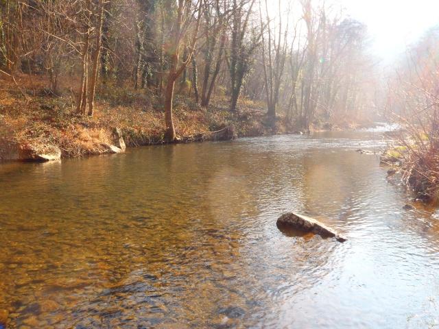 quels que photo de ma rivière pour l'ouverture de la truite Photo610