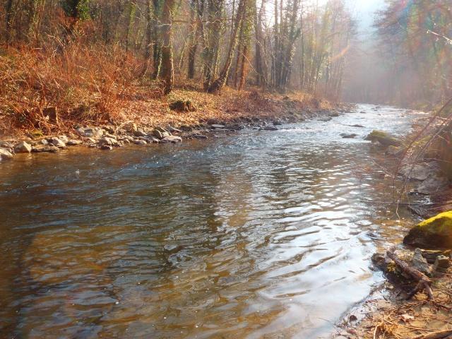 quels que photo de ma rivière pour l'ouverture de la truite Photo710