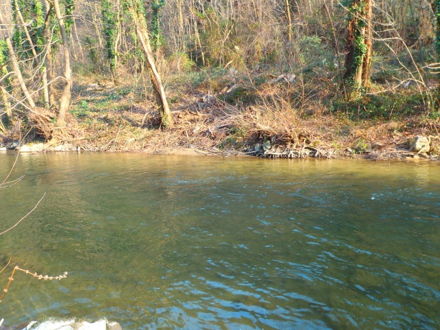 quels que photo de ma rivière pour l'ouverture de la truite Photo810