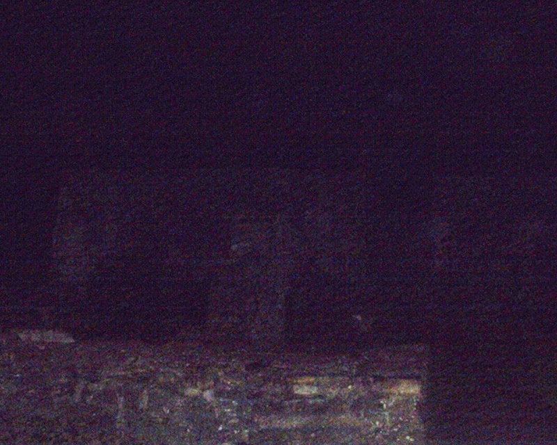 EGLINTON CASTLE PICS 15/11/08 Eglint25