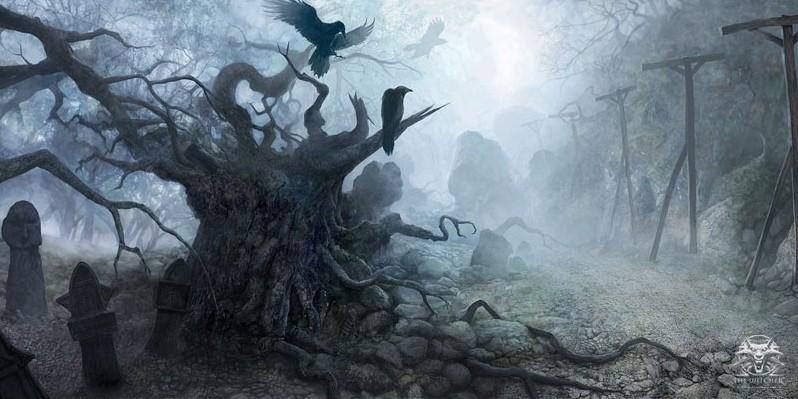 Tannière du clan des Crocs de l'Ombre