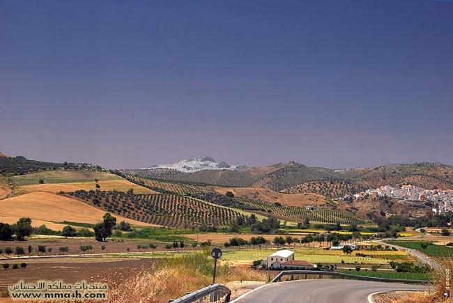 Olvera القرية البيضاء في أسبانيا 210